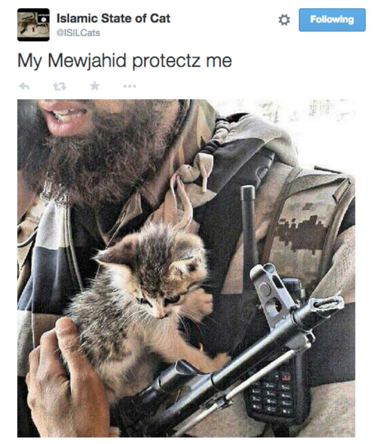 Screenshot of @ISILCats tweet